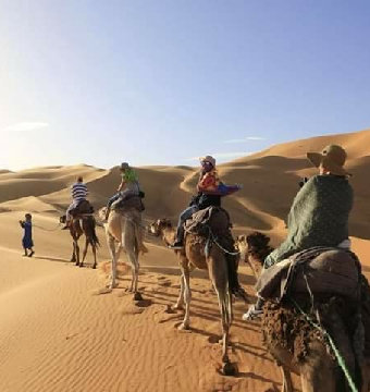 Camel Trek and 1 Night in Merzouga Camp